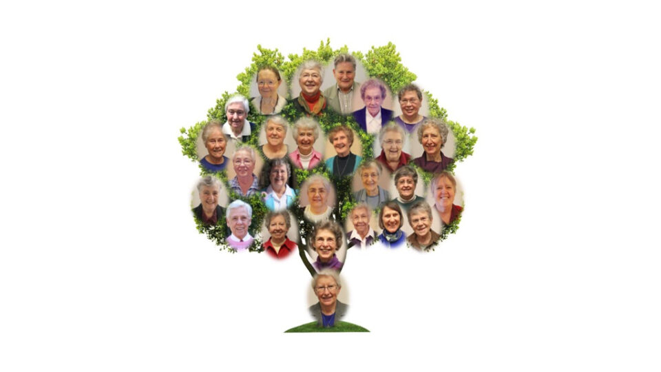 Image of the Sisters of Ann on a decorative tree
