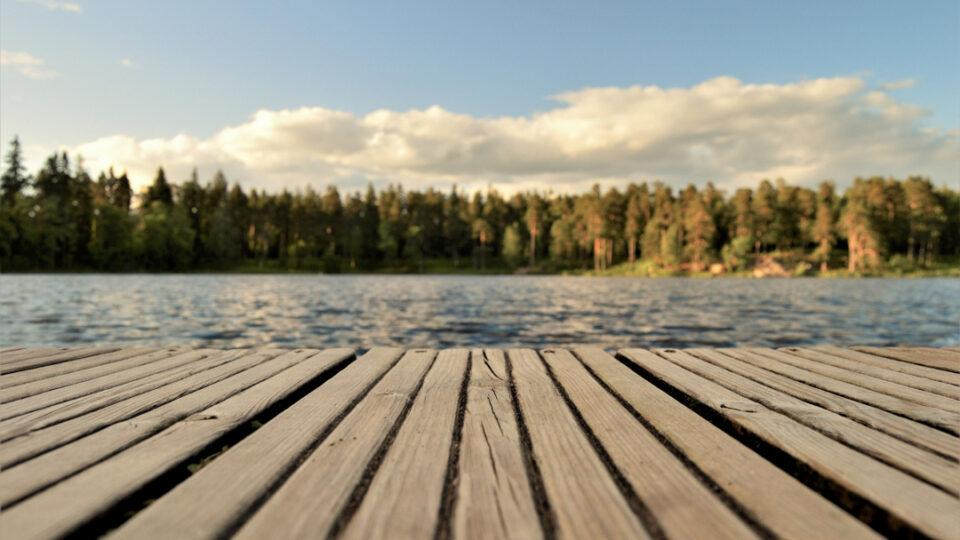 photo - lake and trees from dock / ac et arbres depuis le lac